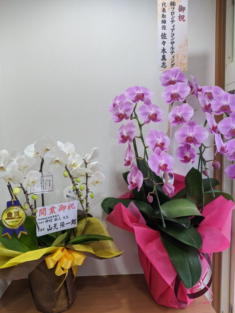 事務所開設お祝いのお花1